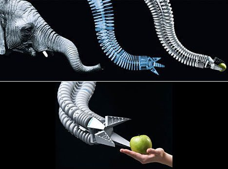 animal-biomimicry-elephant-trunk-robot-arm