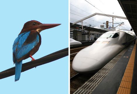 animal-biomimicry-kingfisher-bullet-train