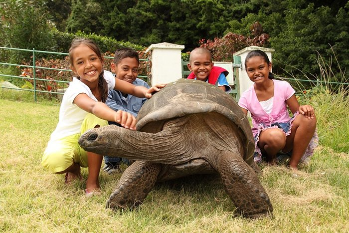 182-year-old-tortoise-jonathan-1