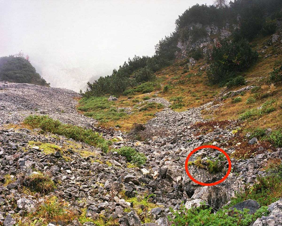 the-snipers-muzzle-is-visible-on-top-of-the-two-big-boulders-in-the-lower-right-corner