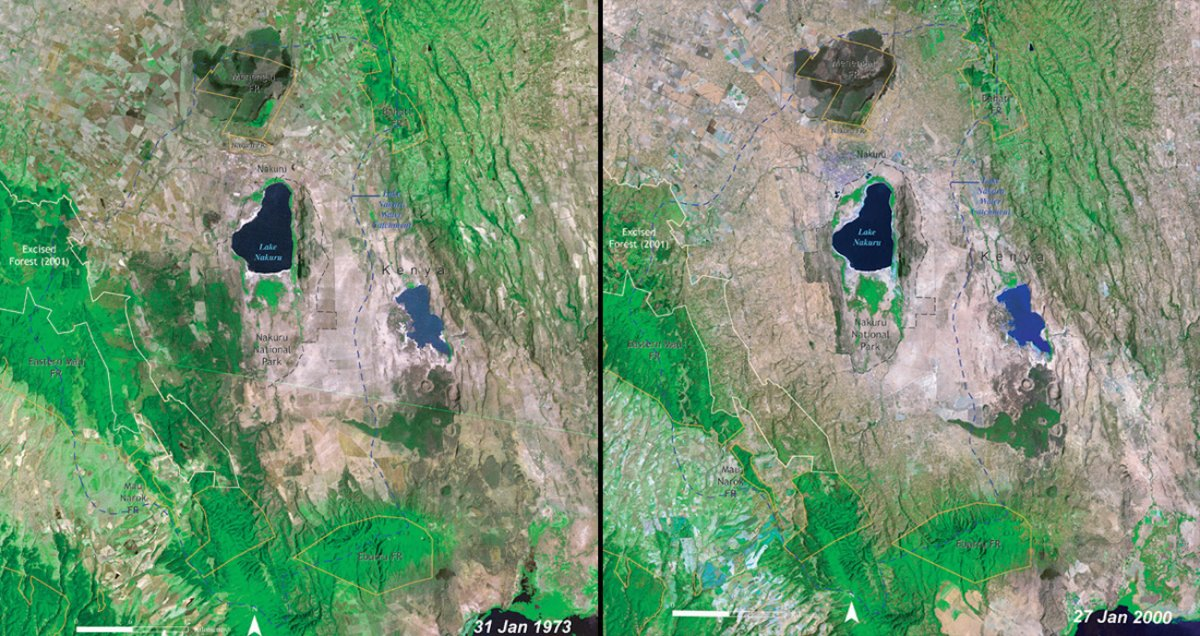 deforestation-of-lake-nakuru-national-park-kenya-1973-vs-2000