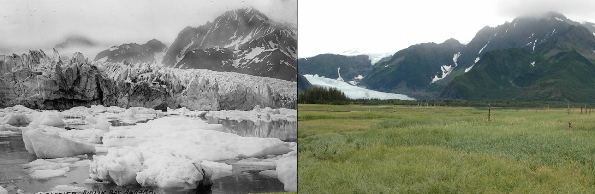 melting-pedersen-glacier-alaska-august-1917-vs-august-2005