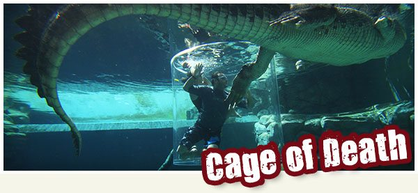 cage-of-death-1