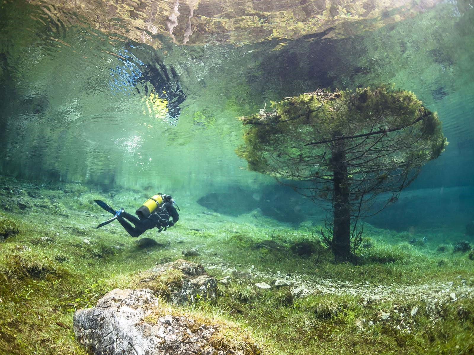 """Mandatory Credit: Photo by REX/Marc Henauer/Solent News (3010613d) A scuba diver explores the flooded park around Green Lake Green Lake, which doubles in size and covers a park at certain times of the year, Tragoess, Austria - 2013 *Full story: http://www.rexfeatures.com/nanolink/mjhf These photographs appear to show a spectacular underwater world. Twelve metres of water covers trees, footpaths, benches and bridges that are only accessible at certain times of the year. During the winter Green Lake in Tragoess, Austria, is normally only one metre deep and visitors can stroll through the park next to the picturesque lagoon. However, at certain times of the year snowmelt from the nearby Karst mountains floods the lake and everything surrounding it. At this point an extra 12 metres of water, which is crystal clear and with a temeprature of seven degree celsius, helps to double the size of Green Lake from 2,000 square metres to 4,000. Marc Henauer, from Perly, Switzerland, and his wife travelled with their scuba diving gear to explore the flooded park. The 39-year-old said: """"When I was underwater, it felt like I was swimming in a magical world, it was so beautiful."""